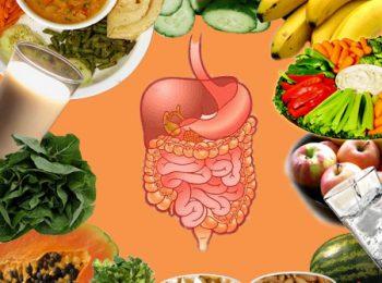 кишечник и продукты