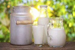 молок