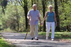 гуляют пешком