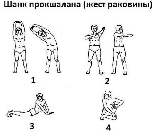 упражнение жест раковины